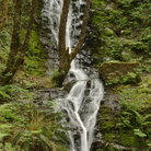 Picture - Bridge Creek Falls, Tillamook Forest.