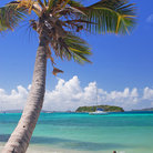 Picture - A boat anchored off shore, in front of beach in the Tobago Cays.