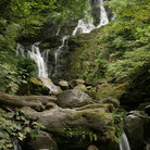 Picture - Lush surroundings of Torc Cascade.