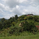 Picture - Lush vegitatation in the hills of Trinidad.