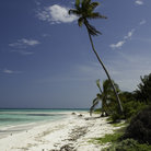 Picture - Beautiful beach at Tulum.