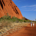 Picture - Red walking path around Uluru.