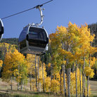 Picture - A gondola with trees showing fall colors in Vail.