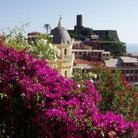 Picture - View over Vernazza.