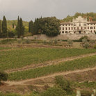 Picture - View of Villa de Vistarenni.