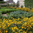 Picture - The garden of Chateau de Villandry.
