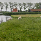 Picture - A pasture in front of Volendam.