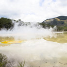 Picture - Steam off a thermal area at Waiotapu.