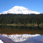 Picture - Snow capped Mt Rainier reflection.
