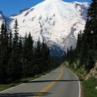 Picture - The road to Mount Rainier.