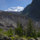 Picture - Mount Rainier from carbon glacier.