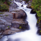 Picture - Paradise River in Mount Rainier National Park.