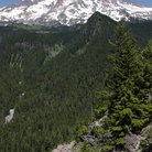 Picture - Ricksecker Point View of Mount Rainier in Mount Rainier National Park.