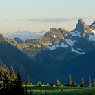 Picture - Rugged peaks of Mount Rainier National Park above a green pasture.