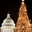 Picture - Christmas, Capitol Building, Washington.