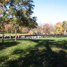 Picture - Grounds of the Vietnam Memorial in Washington.