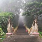 Picture - Mist covered stairs leading to Doi Suthep temple, Chiang Mai.