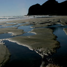 Picture - Bethells Beach.