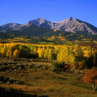 Picture - Fall colors in front of Mt. Sopris in the White River National Forest.