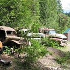 Picture - Rusty cars from an old mining operation in the Willamette National Forest.
