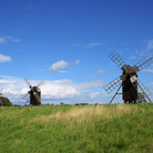 Picture - Windmills in Oland.