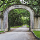 Picture - A gate at the Wormsloe State Historic Site in Savannah.