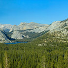 Picture - High Sierras, Yosemite National Park.