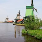 Picture - Traditional windmills at Zaanse Schans village.