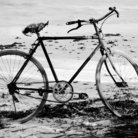 Picture - A bicycle on the beach in Zanzibar.