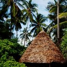 Picture - Thatched roof hut on Zanzibar Island.