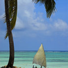 Picture - A traditional dhow on a beach on Zanzibar.