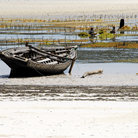 Picture - Old boat at a seaweed farm on Zanzibar.