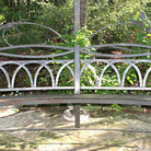 Picture - Metal bench surrounded by greenery in Zilker Botanical Garden.