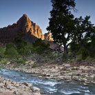 Picture - Virgin River in Zion National Park, Utah.