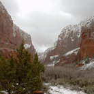 Picture - Snow at Kolob Canyons, Zion National Park.