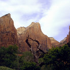 Picture - Rock walls of Zion Canyon.