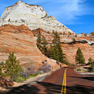 Picture - Road through Zion National Park.