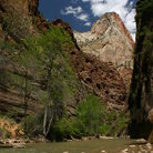 Picture - View of Zion National Park, Utah.