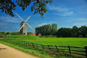 Picture - Rural landscape in Bokrijk with windmill.