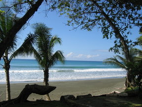 Picture - Beach in Corcovado National Park.