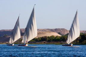 Picture - Feluccas sail on the Nile, offering visitors a chance to explore the area by water.