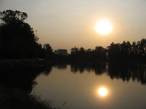 Picture - Late afternoon sun at Ibirapuera Park in Sao Paulo.
