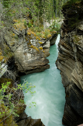 Picture - Athabasca Falls in Jasper National Park.