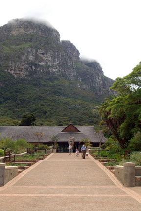 Picture - The Kirstenbosch National Botanical Garden in Cape Town.