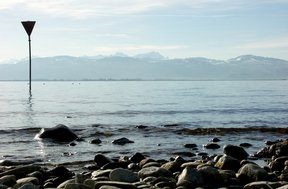 Picture - Calm day on Lake Constance.