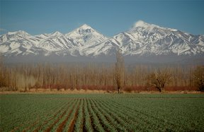 Picture - Fields and mountains, the landscape around Mendoza.
