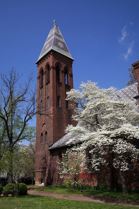Picture - An old church tower and spring blossoms in Paducah.