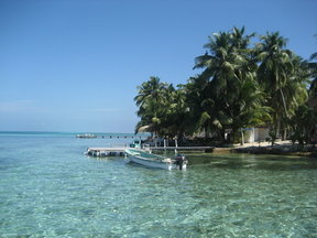 Picture - Calm waters off Tobacco Caye.