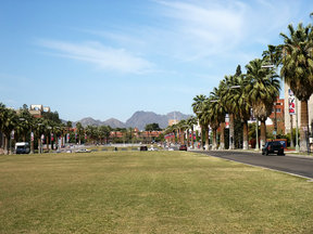 Picture - University of Arizona campus, Tucson.