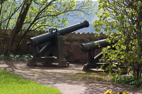 Picture - Cannon at Wartburg.